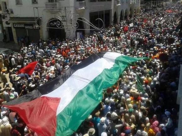 Solidarity With Gaza 2