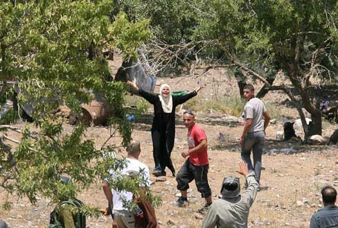 Palestine-di-Kebun-Zaitun