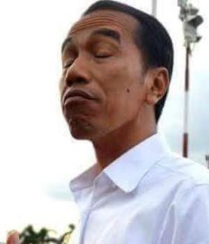 JokowiBlenyun-300x350