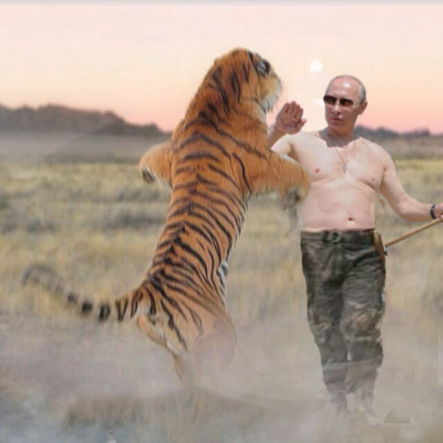vladimir-putin-fights-tiger-saves-family-at-kruger-park2