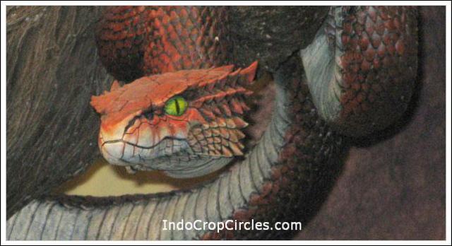 illuminati-symbols-serpent
