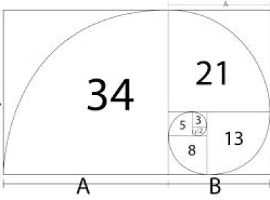Ciptaan Allah dan The Golden Ratio